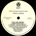 Fallen Angel Vinyl Promo Side 2