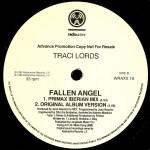 Fallen Angel Vinyl Promo Side 2