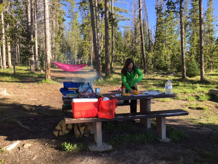 Sawtooth Camping Site