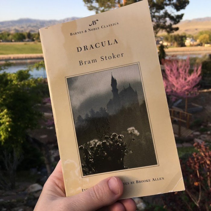 ways to build anticipation for a vacation, read books like Dracula by Bram Stoker