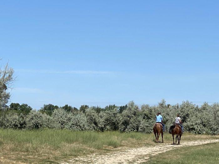 Horseback riding at Eagle Island State Park