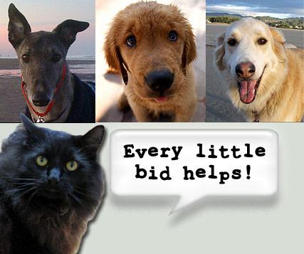 Every little bid helps!