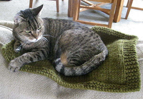 My Cat Greta on her Cat Mat