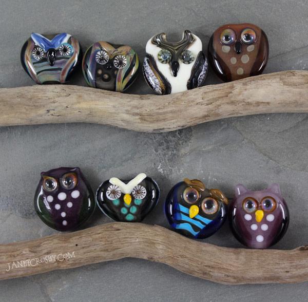 HootGroup-OwlsIMG_4198