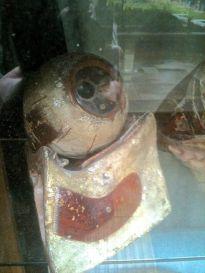 Large model of an eye.