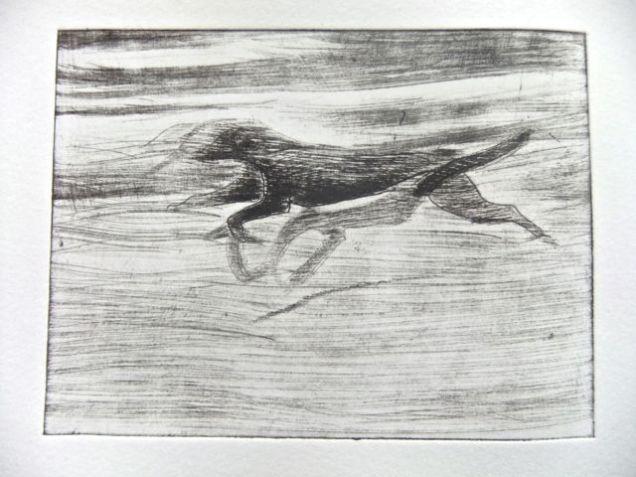 Black dog running 1-0