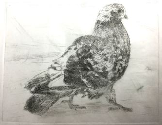 The Byker Pigeon version 1, drypoint.