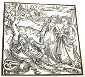 Reproduction of print by Albrecht Dürer.