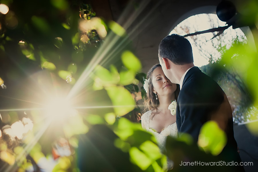 Sunlight and Ivy at Summerour Atlanta wedding