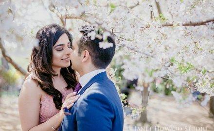 cherry blossom engagement photos