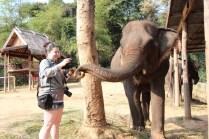 Sarah feeding elephant