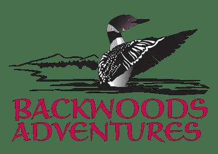 Backwoods Adventures Digital Illustration of a Loon for Logo