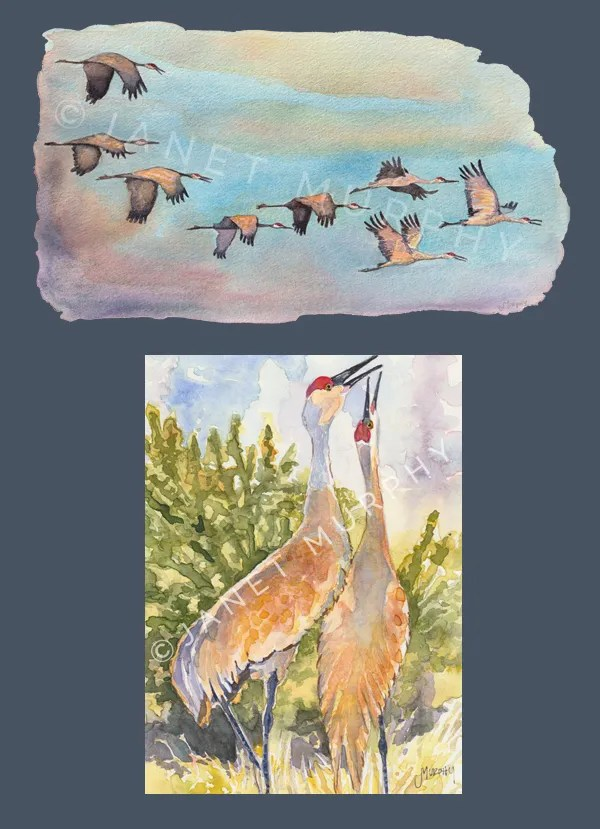 Watercolor illustrations for children's picture book.