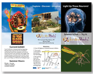 Brochure trifold for science museum's current exhibits.