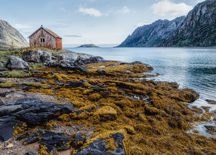 Norway, 2019, Ostre Nesland, Fjord, landscape, seascape
