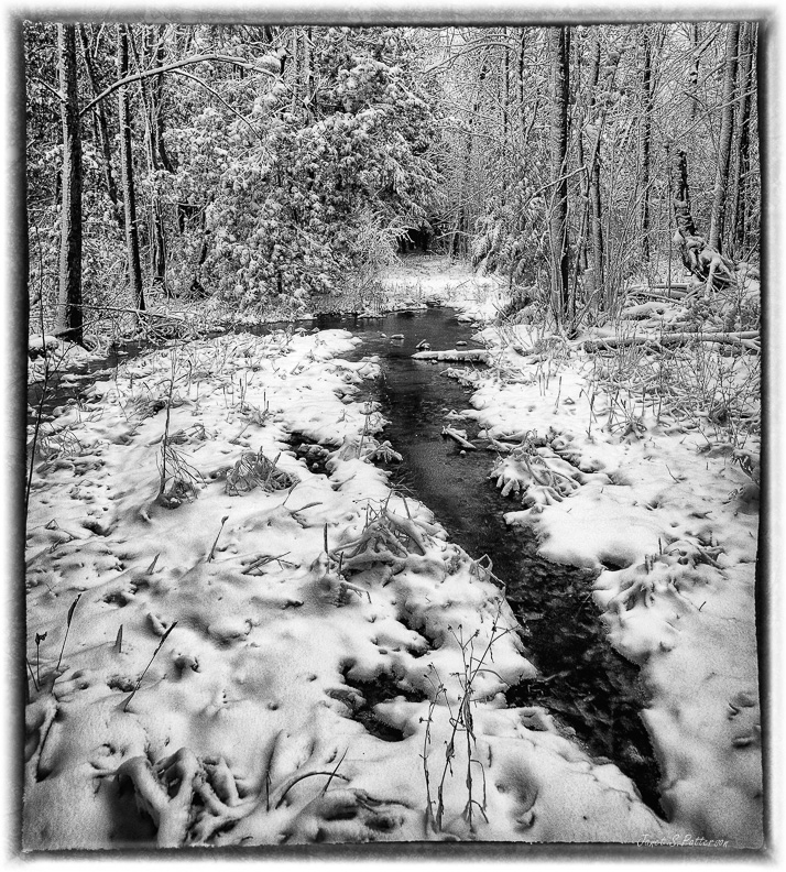 winter, water, trees, snow, trails