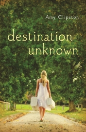 Destination Unknown, by Amy Clipston