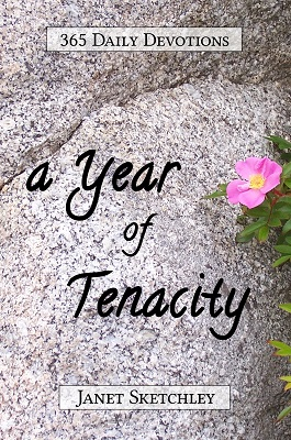A Year of Tenacity: 365 Daily Devotions #devotional #Christianliving