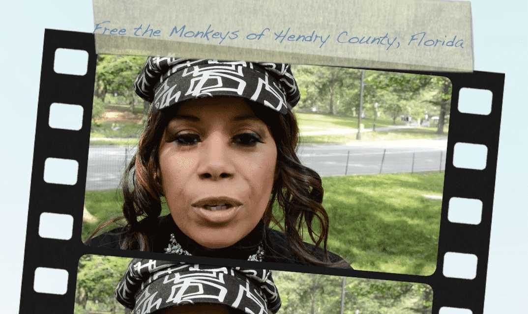 "Robbyne Kaamil's ""FREE THE MONKEYS"" Music Video Debuts Here & Now!   WATCH!"