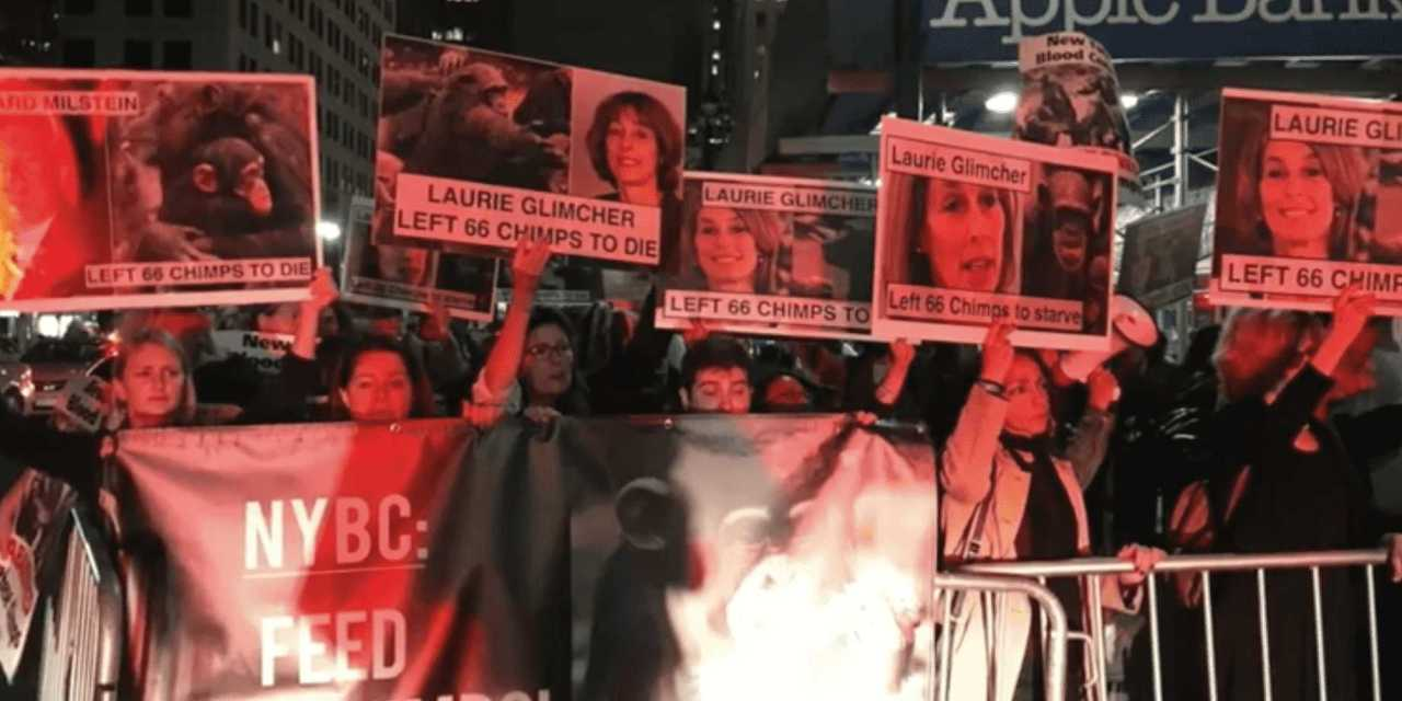 Mayhem at Posh New York Blood Center Gala as Protesters Converge!