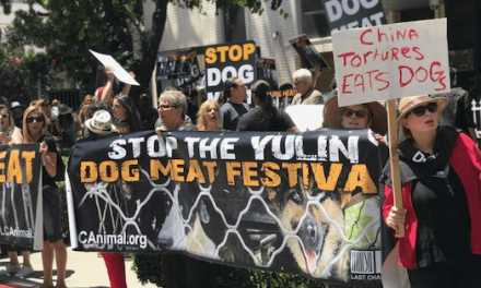 Huge Dog Meat Protest in LA!