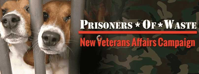 Call NOW to Save Dogs from Veteran's Administration Torture!
