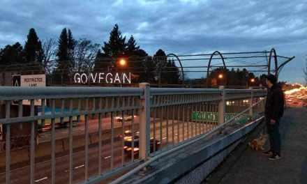 """Go Vegan"" Sign Lights Up Over Interstate Overpass During Rush Hour!"