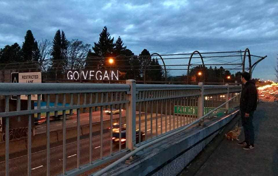 """""""Go Vegan"""" Sign Lights Up Over Interstate Overpass During Rush Hour!"""