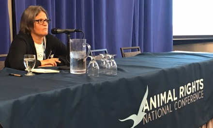 Anita Krajnc on 10 Things We Can Do To Up Our Organizing Game For The Animals!