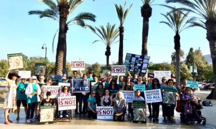 """Protesters Request """"FREE BILLY the Elephant"""" from Captivity at the LA ZOO!"""