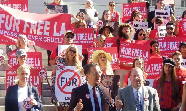 Breaking News!!! LA City Council Bans Fur Sales!