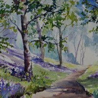 Bluebell Wood in Watercolours.