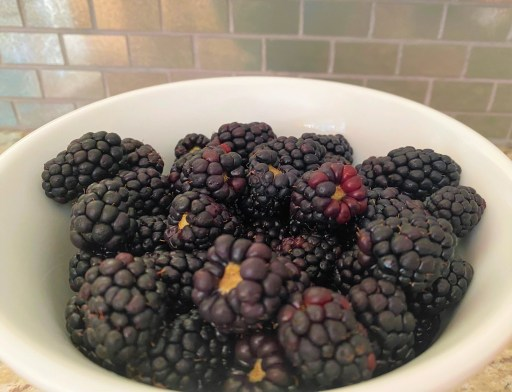 Close-up of blackberries in white bowl
