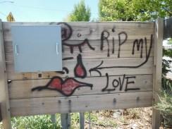 RIP in Laramie