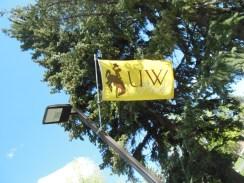 UW flag snap