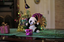 One of the interns takes photos of her little panda in different locations