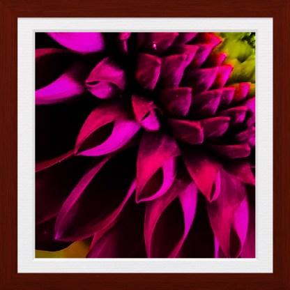 AdobePhotoshopExpress_7c6c70071dda426c8021a8f759e3a8e6