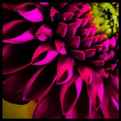 AdobePhotoshopExpress_e0a88f4bc65c459480bb5c6dd9d6dd66