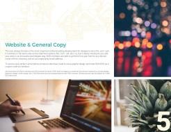 Website & General Copy