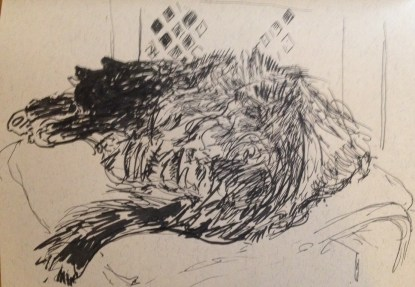 Messy Cat (pen 2014) A5