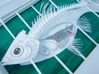 52b Fish Layers Angle