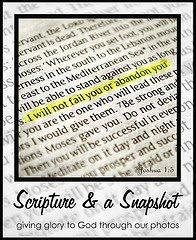 Scripture-2526-A-Snapshot