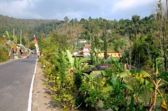 Teraz jestesmy bardziej na wschód, w okolicach Surakarty. Uroki wsi jawajskiej.