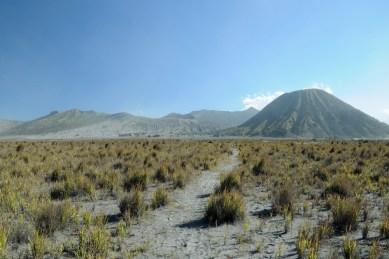 Znów wchodzimy w kalderę, wiatr i pył, i nagle robi się właśnie tak! Spokój! Ten niższy po lewej to Gunung Bromo, a ten wyższy po prawej, to Gunung Bator.