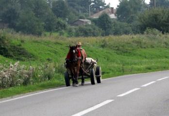 Konie z czerwonymi pomponami będą nam się przewijać przez drogi w całej Rumunii. Nie tylko na wsiach, ale też w miastach.