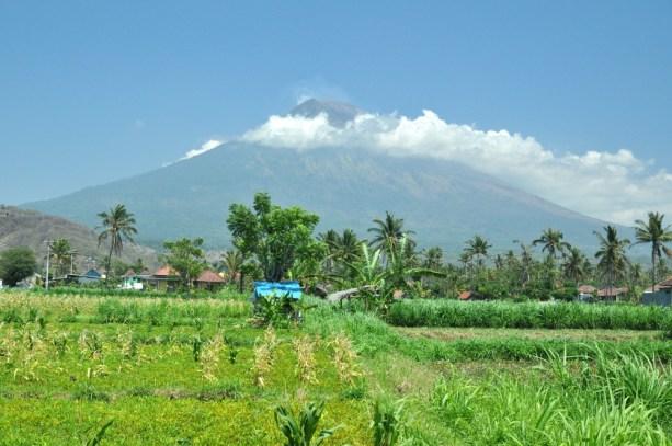 Zwijamy się na południe, bo na południu Bali jest lotnisko. Zanim tam dojedziemy, jeszcze Agung.
