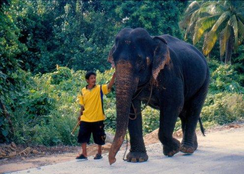 Tajlandia ประเทศไทย