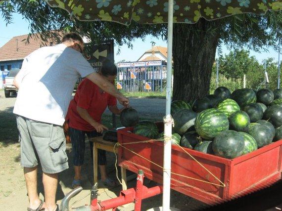 Sierpień to dobra opcja na arbuzy i melony.