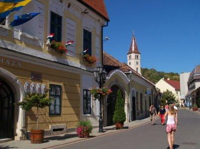 """Tokaj wraz z całym regionem (20-parę miejscowości) znajduje się na liście UNESCO """"ze względu na walory przyrodnicze, architektoniczne i kulturalne oraz miejscowe tradycje winiarskie""""."""