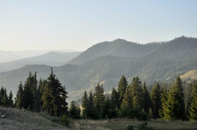 Przejeżdżamy przez góry i przełęcze, bo w Gruzji inaczej nie ma.